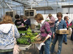 women shopping for different plants and flowers for their homes and gardens at Tree Top Nursery in Green House