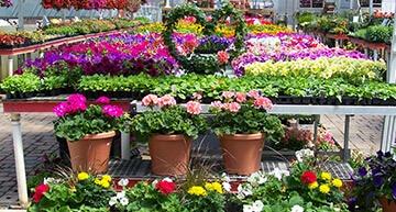 featured-garden-center
