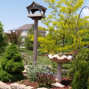 A birdhouse and a bird bath sitting in a retaining wall with oher shrubs planted next to them