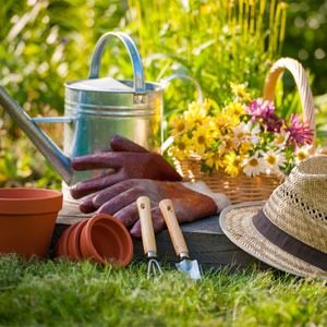 A variety of gardening tools sitting in the garden of a home